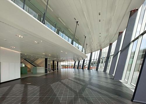 wallrite interiors website design